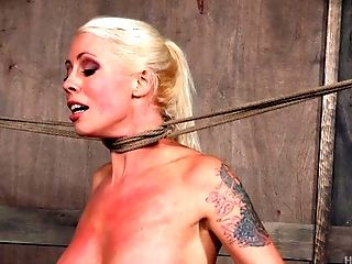 Bound-up Blonde Chick Getting Some Xxx Stimulations For Her Snatch